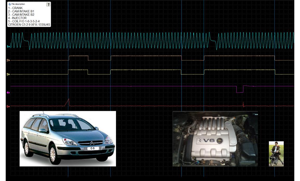 Good timing-CKP & CMP signal-Citroën-C5 2000-2007 : Image 1