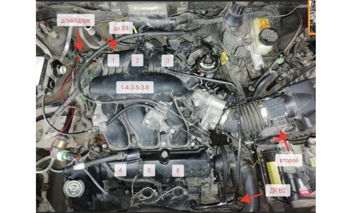 How to connect a scope-CKP & CMP signal-Ford-Escape I / Maverick 2001-2007 : Image 1
