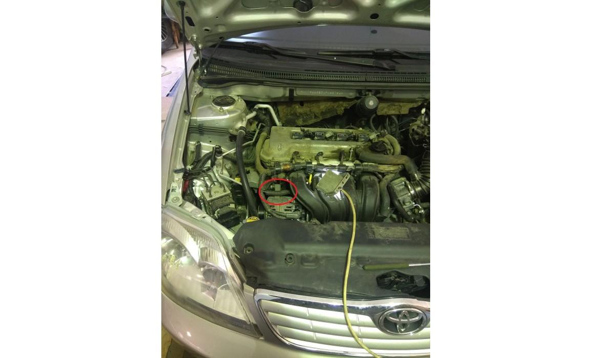 Как подключить осциллограф-Выходное напряжение-Toyota-Corolla 2001-2007 : Image 1