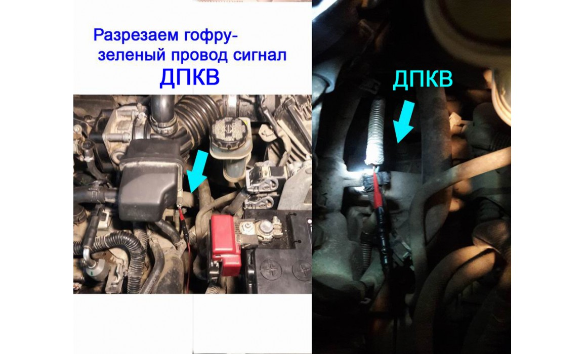 How to connect a scope-Output voltage-Nissan-Qashqai 2006–2013 : Image 2