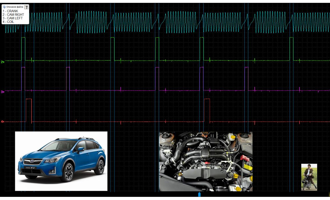 Эталон синхронизации - Сигнал ДПКВ + ДПРВ - Subaru - XV 2011- : Image 2