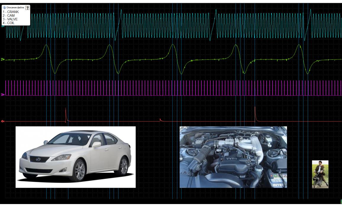 Эталон синхронизации - Сигнал ДПКВ + ДПРВ - Lexus - IS300 1998-2005 : Image 2